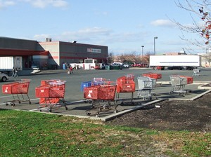 bjs-wholesale-club-shopping-carts-by-dandeluca.jpg